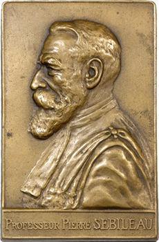 Médecine, professeur Pierre Sebileau, oto-rhino-laryngologiste, par Hérain, 1926