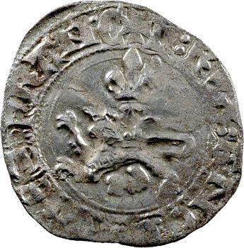 Henri V, niquet ou léopard, Rouen