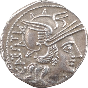 Antestia, denier, Rome, 146 av. J.-C