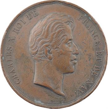 Charles X, Chambre des députés, service des garçons de salle, 1829 Paris