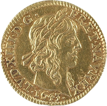Louis XIII, demi-louis d'or à la mèche longue, avec baies, 1643 Paris