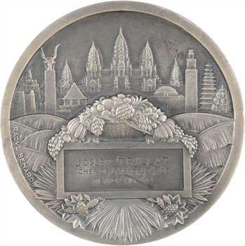 Exposition coloniale de Paris 1931, médaille par Raoul Bénard, à Joseph Trillat, 1931 Paris