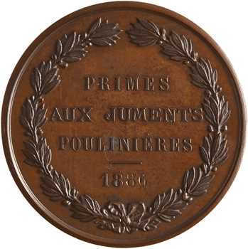 Équitation, Société hippique française, primes aux juments poulinières, 1886 Paris
