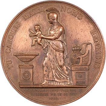 Louis XVIII, naissance et baptème du duc de Bordeaux, par Henrionnet, 1820 Paris