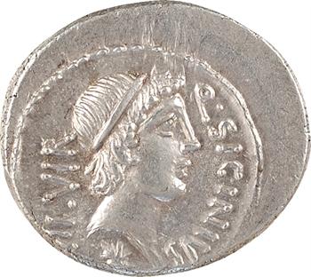 Sicinia, denier, Rome, 49 av. J.-C.