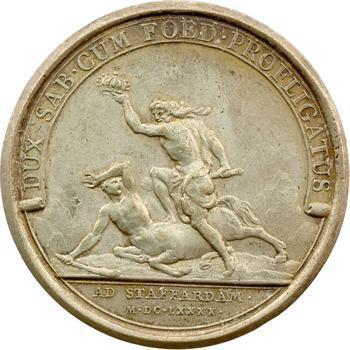 Louis XIV, bataille de Staffarde, 1690 Paris