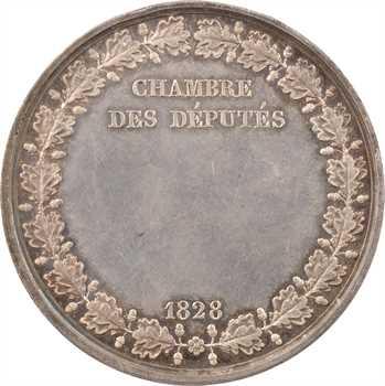 Charles X, Chambre des députés, 1828 Paris