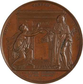 Louis XVIII, l'entrée du Roi à Paris, par Andrieu, 1814 Paris