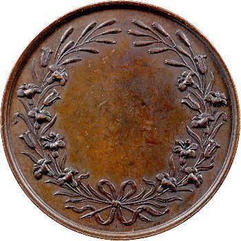 Henri V ou Comte de Chambord, médaille, 1842