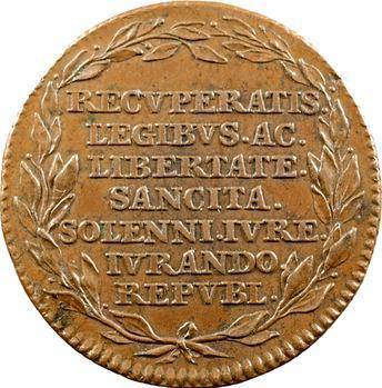Pays-Bas méridionaux, retour de la Liberté en Brabant, 1790