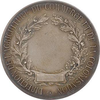 Colonies, Direction de l'agriculture, du Commerce et de la Colonisation, par F. Rasumny, s.d. Paris