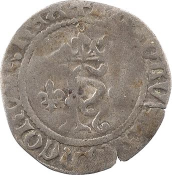 Charles VIII, petit karolus (NOMEN), Châlons-en-Champagne