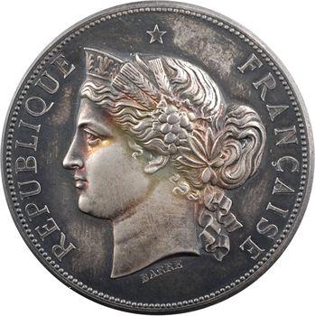 IIIe République, Exposition Universelle, médaille d'argent, participation de Saint-Maurice, 1878 Paris