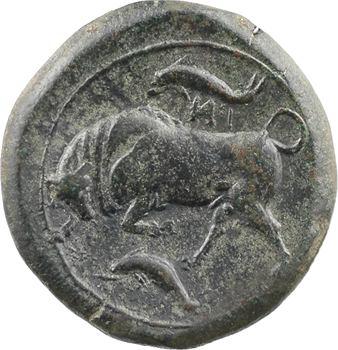 Sicile, Syracuse, Agathoklès, bronze au taureau, c.317-289 av. J.-C.