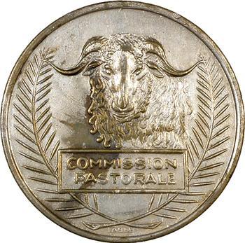 Algérie, commission pastorale, service de l'élevage