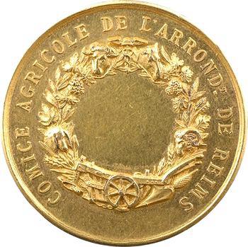 IIIe République, comice agricole de Reims, médaille d'or, s.d. (après 1880) Paris