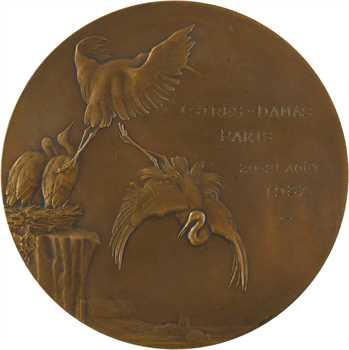 Aviation : Feriam Sidera, Paul Codos et le rallye Istres-Damas-Paris, par Dammann, 1937 Paris