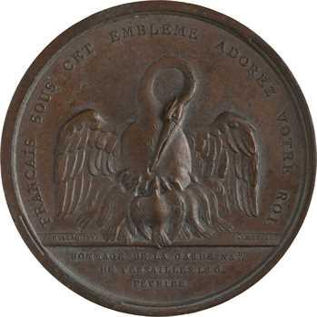 Constitution, hommage de la garde nationale de Versailles à Louis XVI, 6 février 1790 Paris
