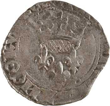 Charles VII, florette 5e émission, Poitiers