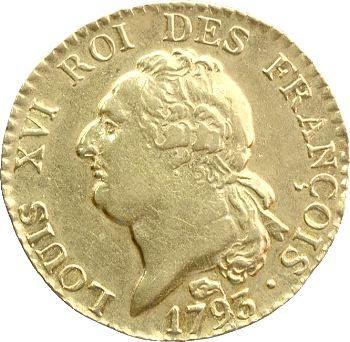 Constitution, louis d'or constitutionnel ou louis de 24 livres, An 5, 1793 Toulouse