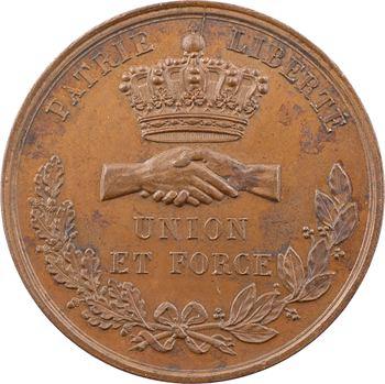 Louis-Philippe Ier, anniversaire du 30 juillet à Nantes, 1831 Paris