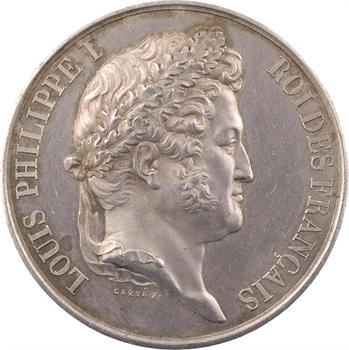 Louis-Philippe Ier, Chambre des députés, par Caqué, session 1839, Paris