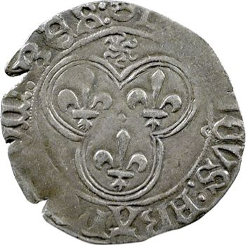 Louis XI, blanc au soleil, Angers