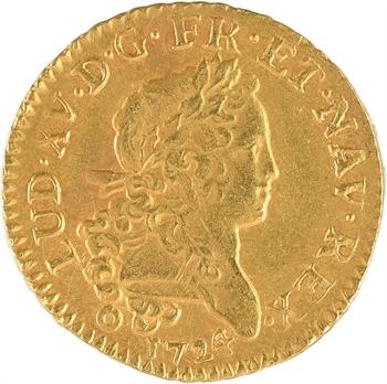 Louis XV, louis d'or dit Mirliton, palmes longues, 1724 Bordeaux