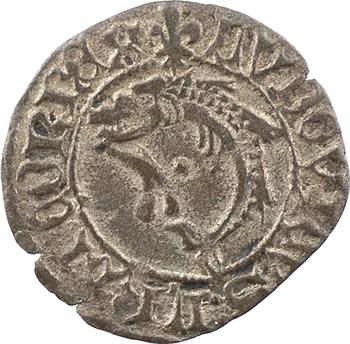Louis XI, liard, Troyes