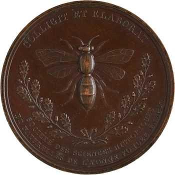 Louis-Philippe Ier, Société des Sciences Historiques de l'Yonne, 1847 Paris