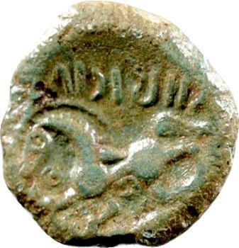 Pagus Catuslogi (Bois l'Abbé), bronze VIIRICIVS