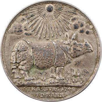 Allemagne, arrivée à Strasbourg d'un rhinocéros, 1748 Strasbourg