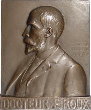 Robert-Merignac (E.) : hommage au Docteur Roux, fonte, s.d. Paris