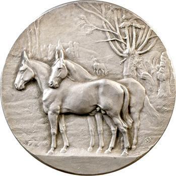Maroc, médaille de l'empire chérifien, chevaux du Maroc