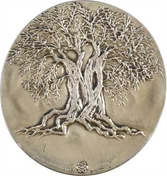 Italie, médaille de la région du Latium, en argent, par Veroi, s.d. (1974)