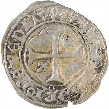 Charles VIII, petit blanc à la couronne, La Rochelle