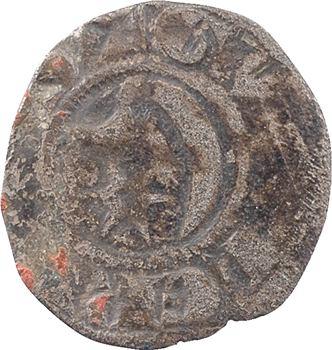 Vierzon (Seigneurie de), Guillaume II, denier, c.1219-1258