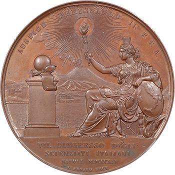 Italie, Deux-Siciles, VIIe congrès des sciences italiennes de Naples, par V. Catenacci et L. Arnaud, 1845 Naples