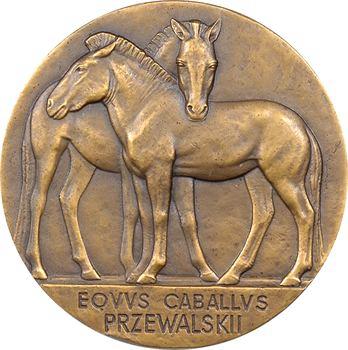 Témont (A.), le Professeur Édouard Bourdelle (Muséum d'histoire naturelle) et le cheval de Przewalski, 1946 Paris