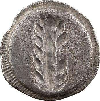 Lucanie, Métaponte, statère ou nomos, c.540-510 av. J.-C.