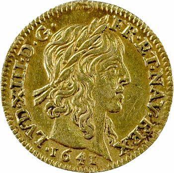 Louis XIII, demi-louis d'or, avec baies, 1641 Paris