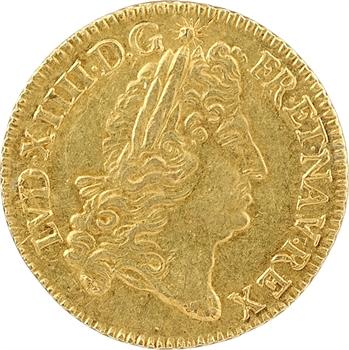 Louis XIV, louis d'or à l'écu, 1691 Tours