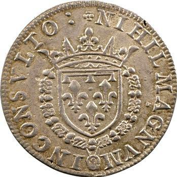 Anjou, Henri duc d'Anjou, fêtes du mariage de Charles IX, 1571