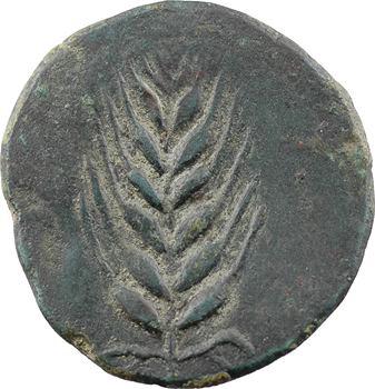 Espagne, Ilipense, as, Ilipa Magna, Séville, c.50 av. J.-C.