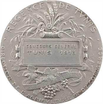 Tunisie, Régence de Tunis, Concours Général de Tunis, par Alphée Dubois, 1913 Paris