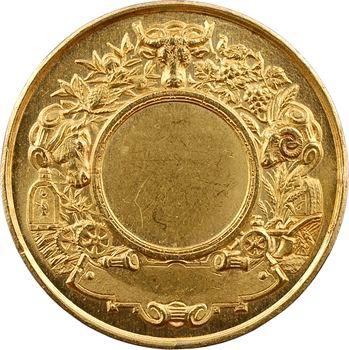 IIIe République, Pont l'Évêque, médaille d'or, s.d. (après 1880) Paris