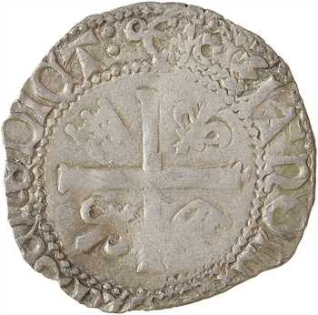 Charles VIII, liard au dauphin 2e émission, Bayonne