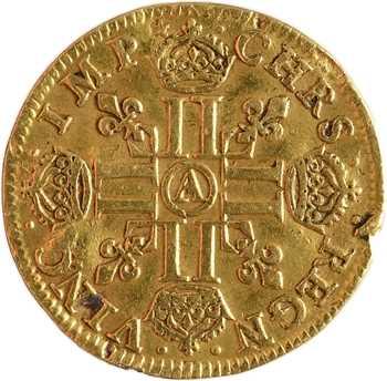Louis XIII, louis d'or à la mèche longue, avec baies, 1641 Paris