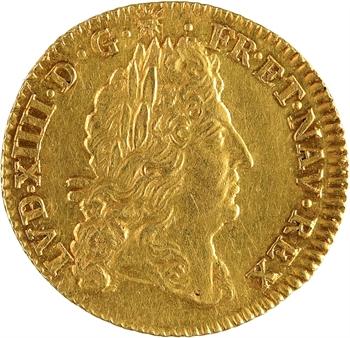 Louis XIV, demi-louis d'or à l'écu, 1690 Amiens