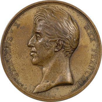 Charles X, mort de Louis XVIII, 16 septembre 1824